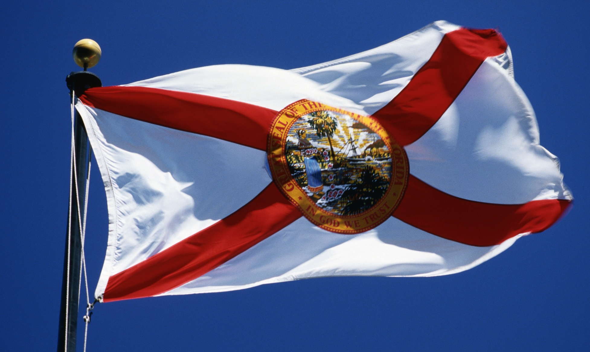 Florida's diversity is key to successful constitution revision process