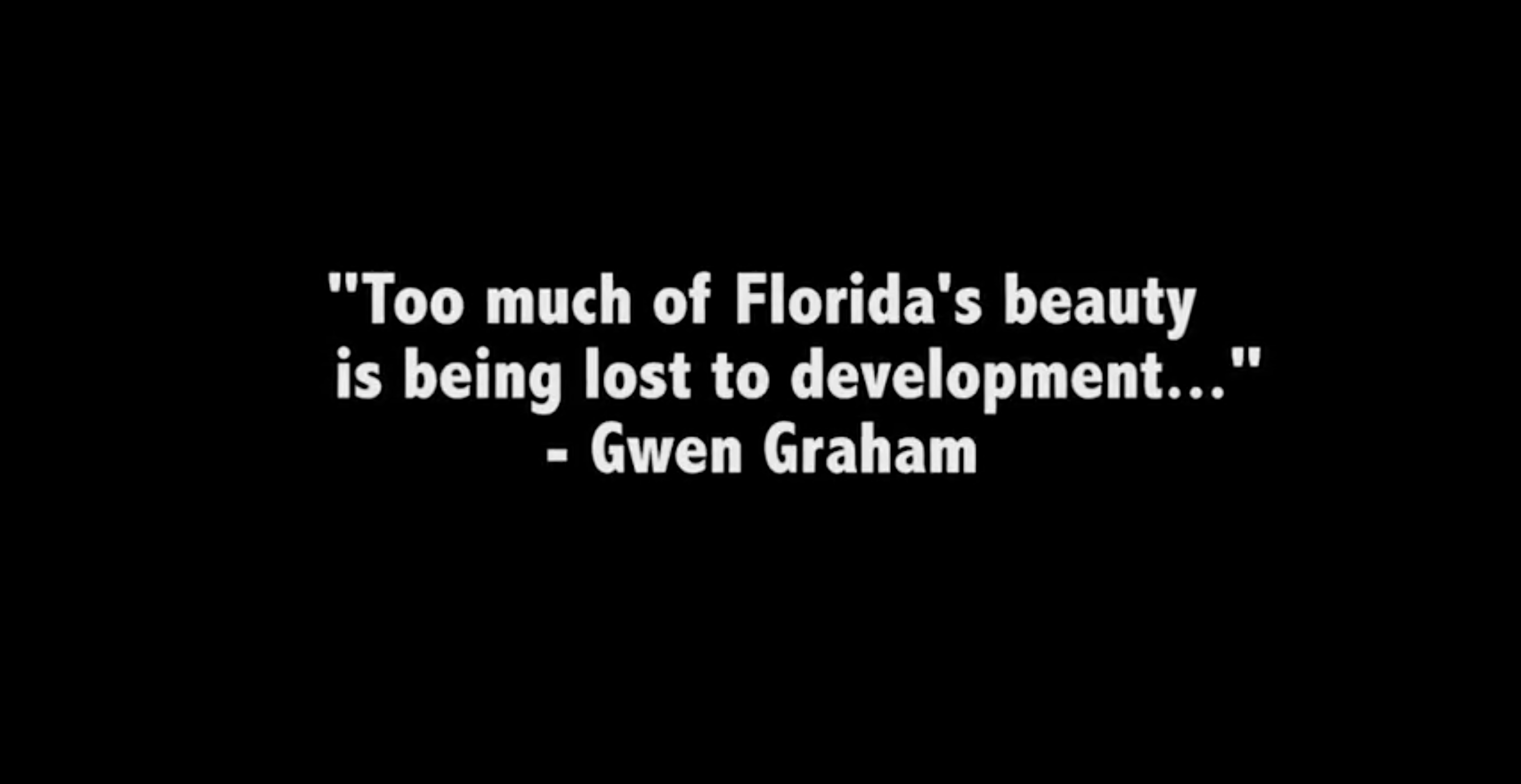 Jeff Greene Attacks Gwen Graham in new Advertisement