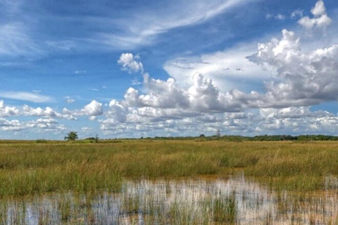 Everglades clean up threatened by Climate Change