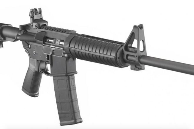 Florida Supreme Court shoots down gun ban measure