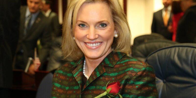 "NRA drops ""Hammer"" on Heather Fitzenhagen's state senate campaign"