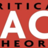 The Floridian critical race theory